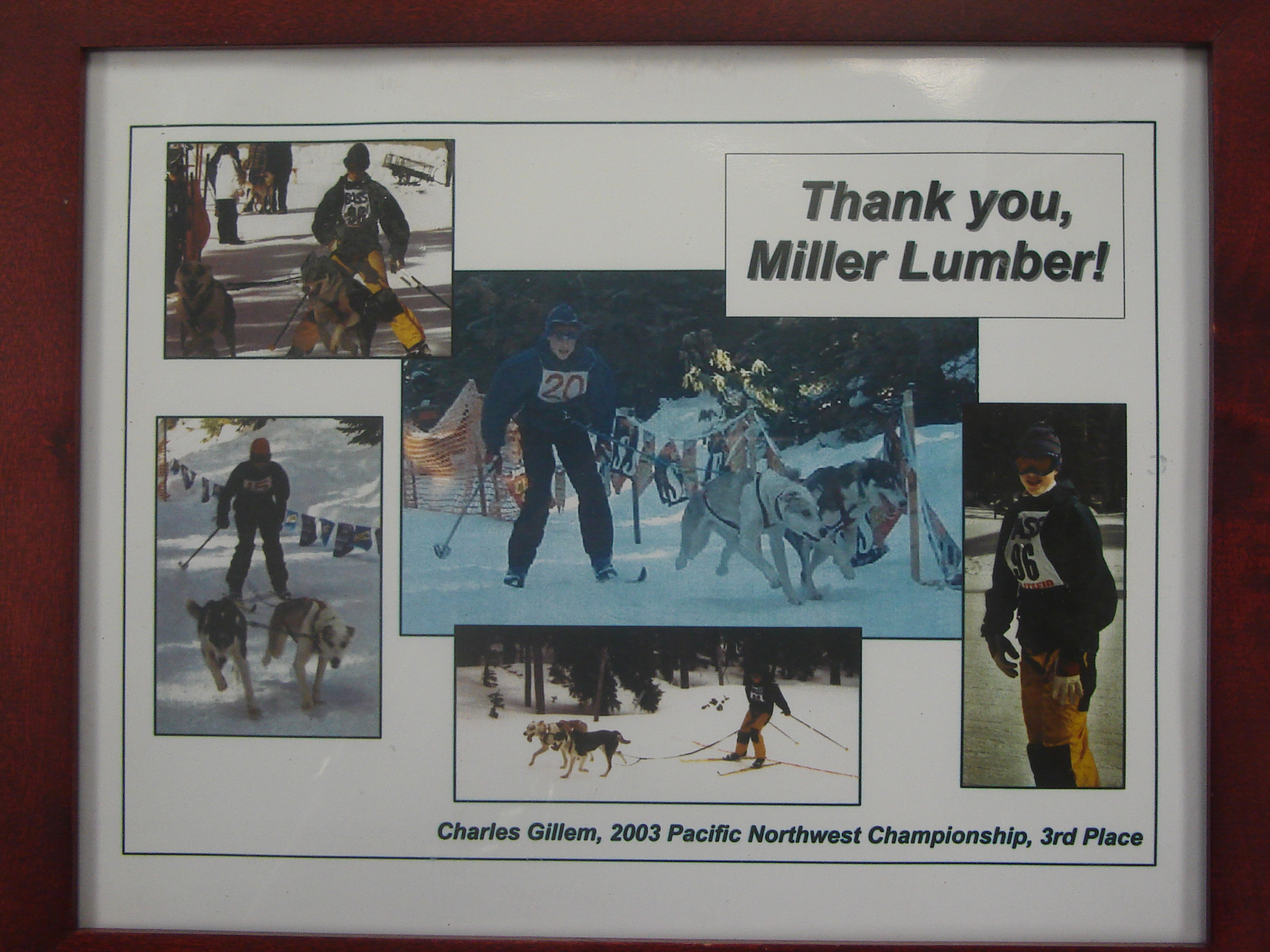 Supporting the growing sport of Skijoring, Miller Lumber sponsored Charles Gillem, the 2003 3rd place winner of the Pacific Northwest Championship.
